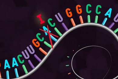 "A  new ""REPAIR"" system edits RNA, rather than DNA."