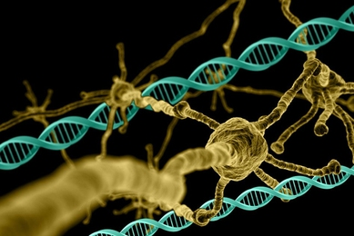 A genome-wide analysis has revealed genes that are essential for neuron survival, as well as genes that protect against the effects of Huntington's disease.