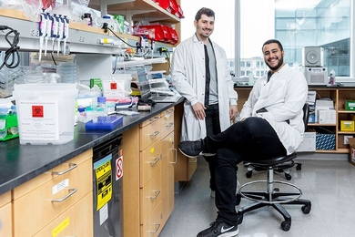 McGovern Institute scientists Jonathan Gootenberg (left) and Omar Abuddayeh in the lab